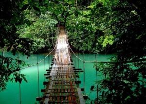 Bridge in Monteverde